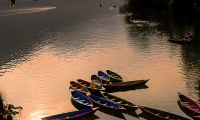 Boats at Phewa Lake