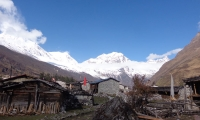 Manaslu from Samdogaun