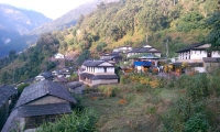 Houses at Ghorepani